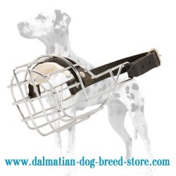 Dalmatian wire cage dog muzzle that allows freedom