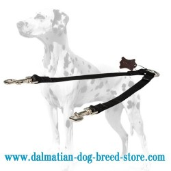 Convenient Dalmatian Coupler Leash for Walking 2 Dogs