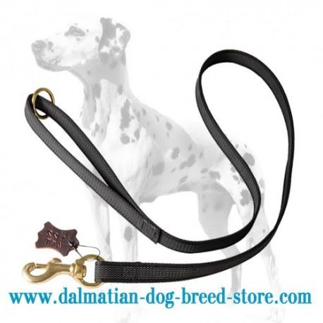 I-Grip Dalmatian Dog Leash of Nylon