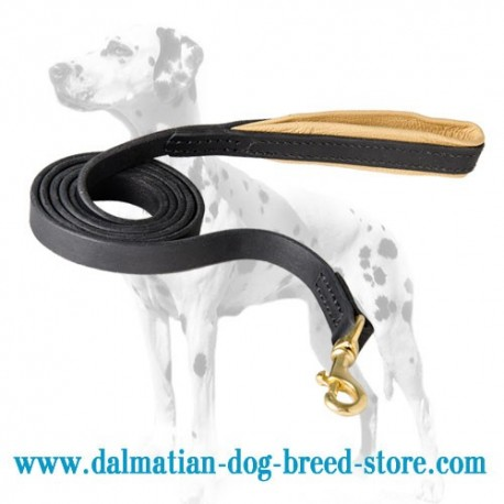 Dalmatian Dog Leash of Leather with Padded Handle