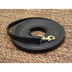 Leather dog leash for tracking