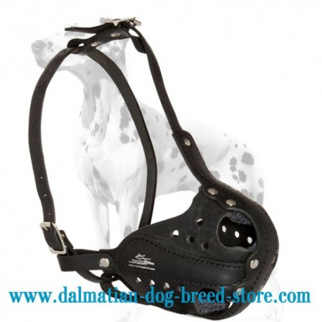 Leather Military Dog Muzzle for Dalmatian Breed