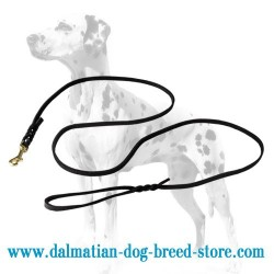 Thin Dalmatian Dog Leash for Shows and Walking